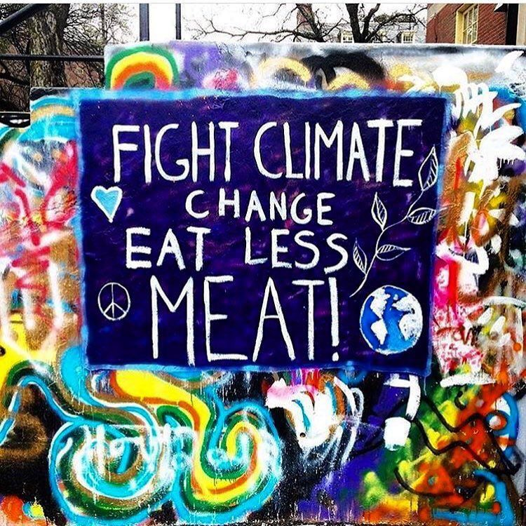 Meat Consumption: How It Is Affecting Climate Change and Our Animals